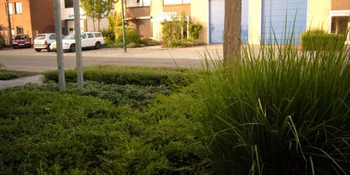 Onderhoud tuin in Woerden