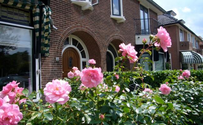 Onderhoud tuin in Zeist